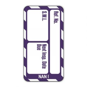 Nanotag™ Inserts - Safe working load (SWL) Next Inspection Date Due